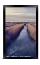 Minsmere Suffolk, Framed Print