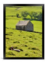 Lazy Day In The Peak District, Framed Print