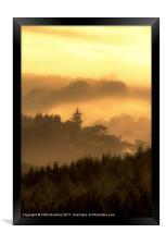 Misty Morning, Framed Print