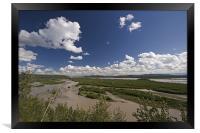 Tenana River, Framed Print