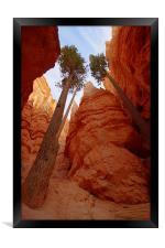 Bryce Canyon walls, Framed Print