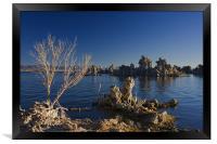 Mono Lake Sunrise III , Framed Print
