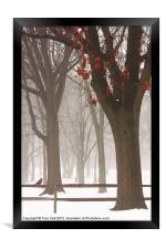 WINTER IN THE WOODS, Framed Print
