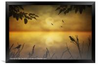 AMBER MORNING, Framed Print