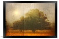 NATURE, Framed Print