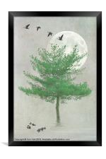 A TREE IN THE MOONLIGHT, Framed Print