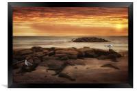 SEAGULLS AT THE BEACH, Framed Print