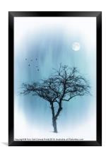 A TREE IN BLUE, Framed Print