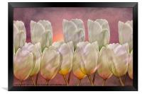 TULIP ABSTRACT, Framed Print