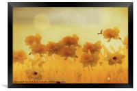 DAFFODILS IN THE SUNSHINE, Framed Print