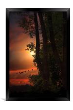 LATE AUGUST SUNSET, Framed Print