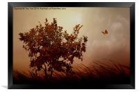 Autumn Serenity, Framed Print