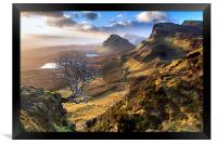 Quiraing Tree, Framed Print