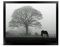 Horse in the Mist, Framed Print