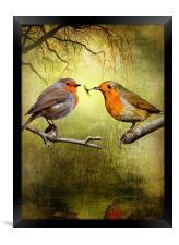 Robin Presents, Framed Print