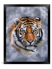 Sky Tiger, Framed Print