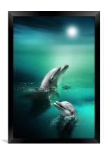 Delightful Dolphins, Framed Print