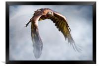 Flight of Fancy, Framed Print