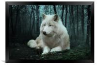 The White Wolf, Framed Print