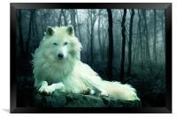 Arctic Wolf, Framed Print