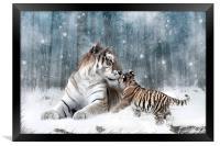 Kaiser Katrina and the Kiss Tiger Canvas Print, Framed Print