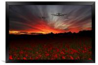 A Poppy Field Dream , Framed Print