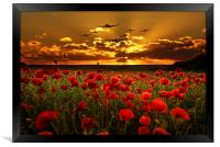 Sunset Poppies The BBMF, Framed Print