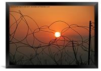 freedom, Framed Print