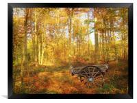 The Woodsmans Glade., Framed Print