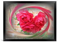 Summer Roses, Framed Print
