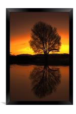 winter reflections, Framed Print