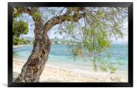 Illa D'Or Through The Trees, Framed Print