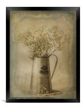 Gypsophylia, Framed Print
