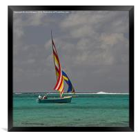 Going with the wind., Framed Print