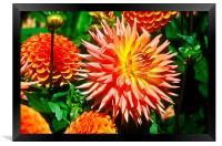 Ornamental Blooms, Framed Print