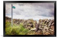 Derbyshire Path, Framed Print