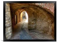 The Alley, Framed Print