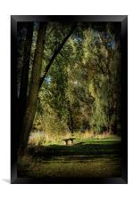 Seat of Meditation, Framed Print