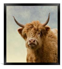 Hairy Highlander, Framed Print