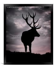 Stag And Sunset 2, Framed Print