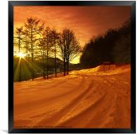 Winter World, Framed Print