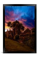 Palm Trees #2, Framed Print