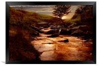 Ladybower Brook, Framed Print