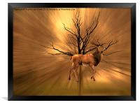 Golden Stag, Framed Print