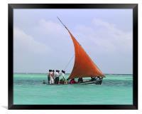 sail boat, Framed Print