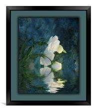 A Passion For Flowers, Framed Print