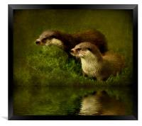 Otters Watch, Framed Print