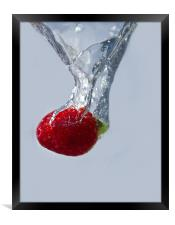 Strawberry Drop., Framed Print