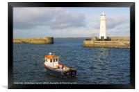 The lighthouse at Donaghadee Harbour, Framed Print