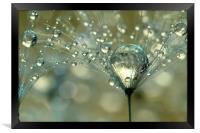 Gold Sparkles, Framed Print